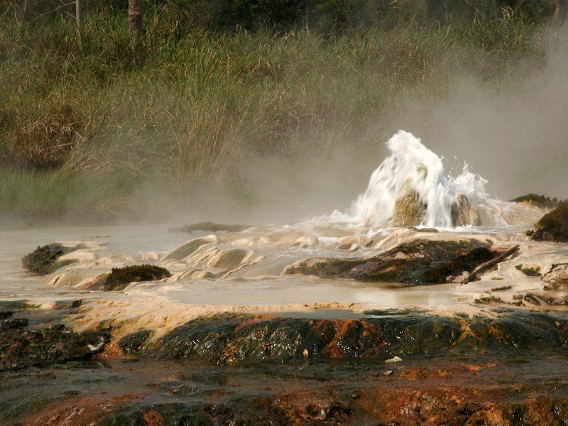 Image result for Semuliki National Park